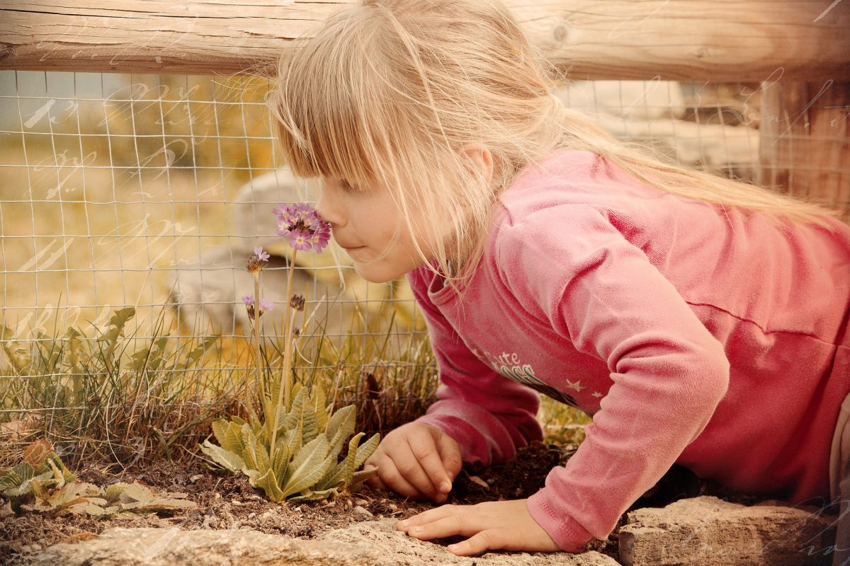 Aromatologia nel mondo dell'infanzia